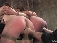 fucked, Hd, Hogtied, Perfect Body, Slave Girl